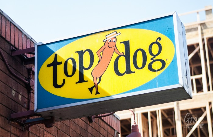 top-dog-hot-dogs-27